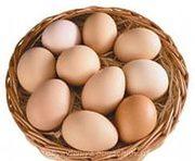 Яйцо,  куриное,  реализуем
